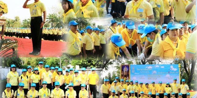 Volunteerpic